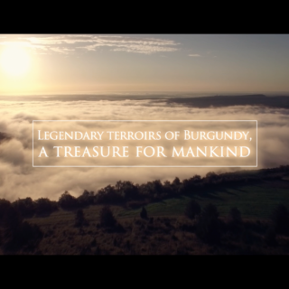Video - Legendary terroirs of Burgundy, a treasure for mankind (EN 2016)