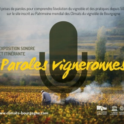 EXPOSITION SONORE : Paroles vigneronnes, à Saint-Romain